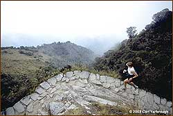 Runner on the Inca Trail